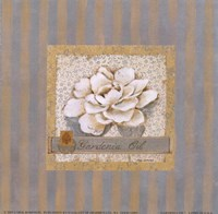 Gardenia Oil Fine-Art Print
