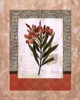 Iris Silhouette Fine-Art Print