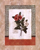 Tulip Silhouette Fine-Art Print