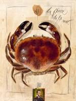 La Pince De La Mer Fine-Art Print