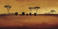 Serengeti II Fine-Art Print