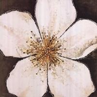 White Delight Fine-Art Print