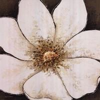 White Enchantment Fine-Art Print