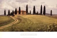 Springtime In Tuscany Fine-Art Print