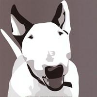 Bull Terrier Fine-Art Print