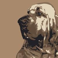 Bloodhound Fine-Art Print