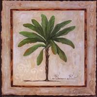 Banana Palm Fine-Art Print