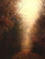 Road Of Mysteries I Fine-Art Print