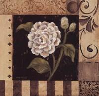 Victorian Summer IV - Petite Fine-Art Print