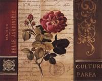 Belle Jardin II Fine-Art Print