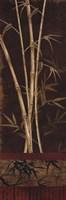 Bamboo Garden II Fine-Art Print