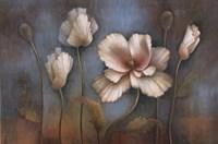 Poppy Melody Fine-Art Print