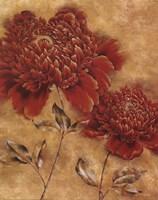 Glorious Rosso I Fine-Art Print