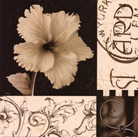 Hibiscus Blossom I Fine-Art Print