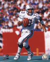 Dan Marino Action Fine-Art Print
