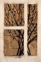 Monochrome Blossom Fine-Art Print