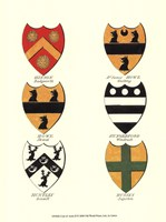 Coat of Arms II Fine-Art Print