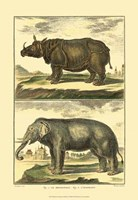 Elephant and Rhino Fine-Art Print