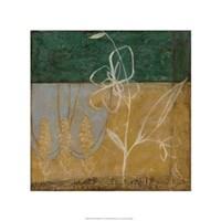 Pressed Wildflowers II Fine-Art Print