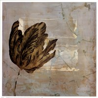 Tulip Dream II Fine-Art Print