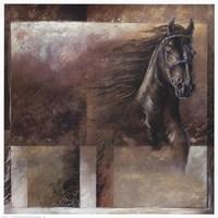 Stallion Fine-Art Print