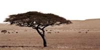 Serengeti Horizons I Fine-Art Print
