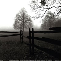 Fence in the Mist Fine-Art Print
