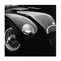 Jaguar C-Type Fine-Art Print