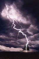 Lightning Striking Tree II Fine-Art Print