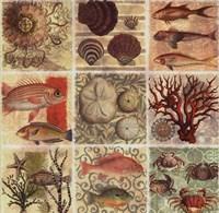 Under the Sea I Fine-Art Print