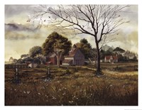 California Wildflowers - Spring Barn Fine-Art Print