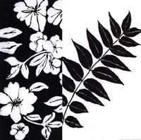 Black And White I Fine-Art Print