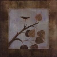 Aspen - CS Fine-Art Print