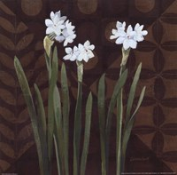 Narcissus on Brown I Fine-Art Print