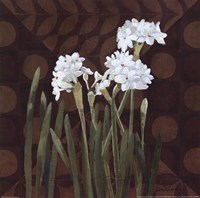 Narcissus on Brown II Fine-Art Print