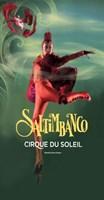 Cirque du Soleil - Saltimbanco? Fine-Art Print