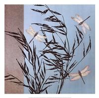 Dragonflies Fine-Art Print