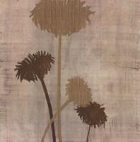 Linen II Fine-Art Print