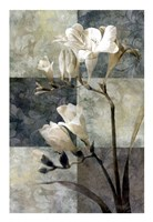 Memento II Fine-Art Print