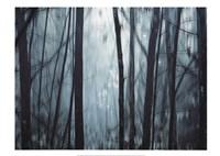 Spring Mist I Fine-Art Print