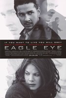Eagle Eye Fine-Art Print