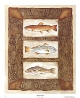 Sport Fish II Fine-Art Print