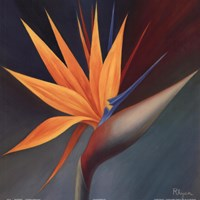 Bird of Paradise I Fine-Art Print