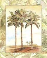Palm Tree IV Fine-Art Print