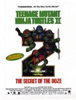 Teenage Mutant Ninja Turtles 2: The Secret of the Ooze Fine-Art Print