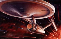 Star Trek Special Edition Fine-Art Print