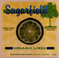 Sugarfield Limes Fine-Art Print