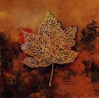 Gilded Lace Fine-Art Print
