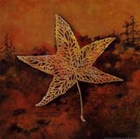 Catch a Star Fine-Art Print