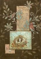 Purple Finch Fine-Art Print